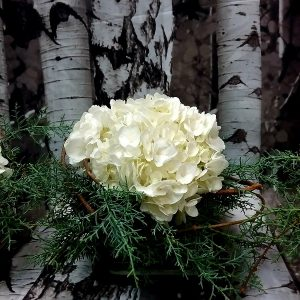 Fleurs - centre de table