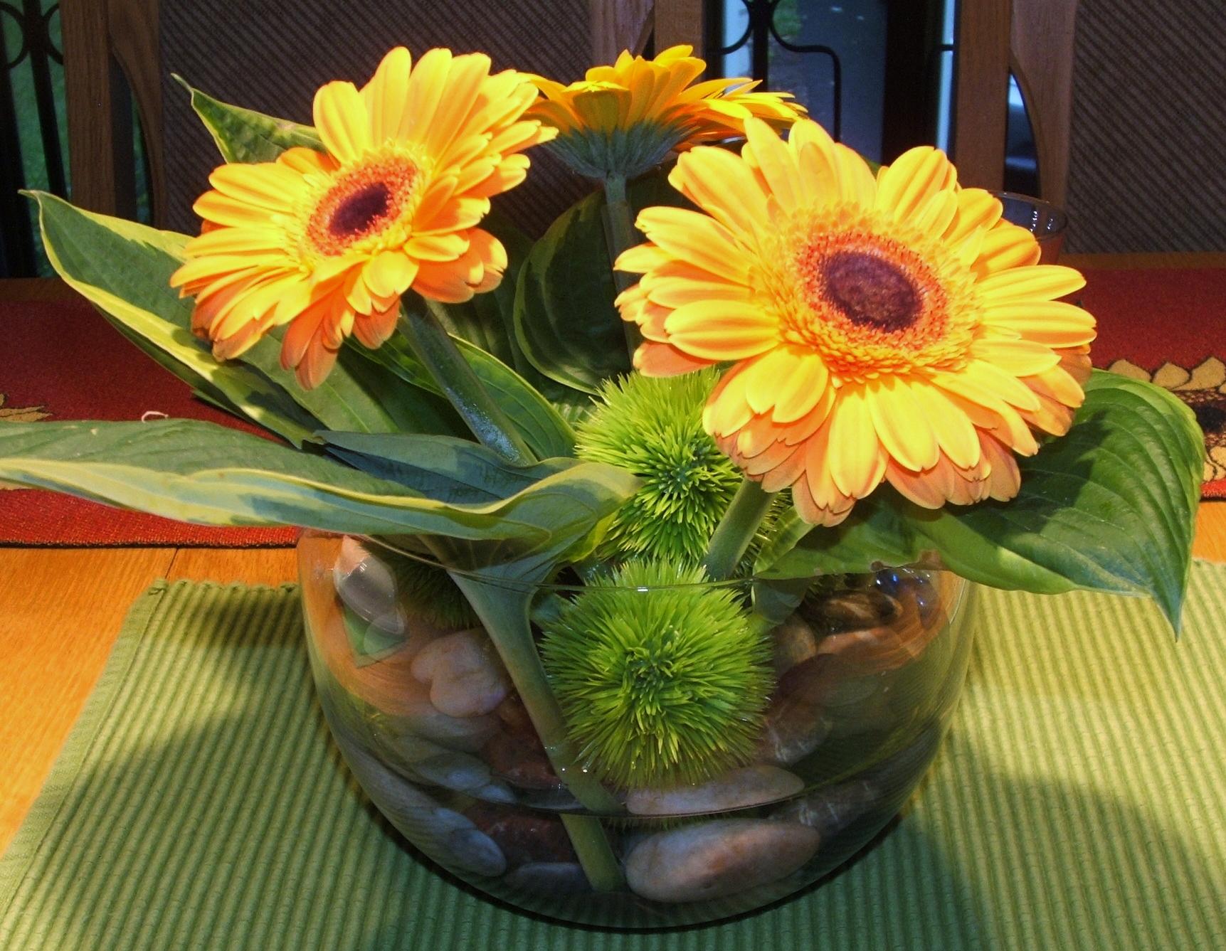 Fleuriste fleurs de cactus for Fleuriste fleurs