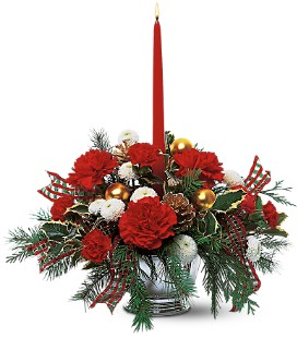 Amaryllis rouge fleuriste fleurs de cactus for Amaryllis fleuriste